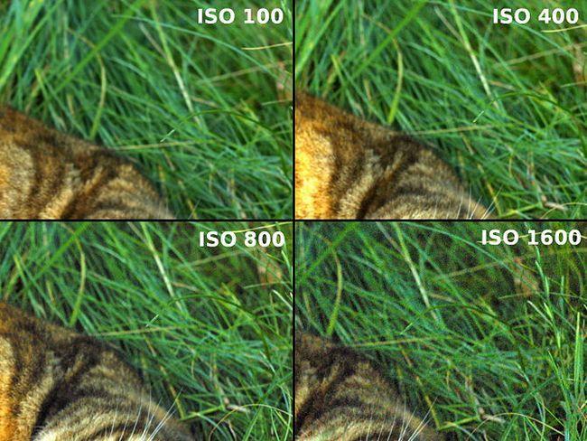 Зображення з назвою Чим менше значення ISO, тим менше шумів буде на знімку.