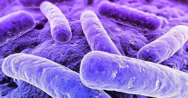мікоплазменна уреаплазменная інфекція