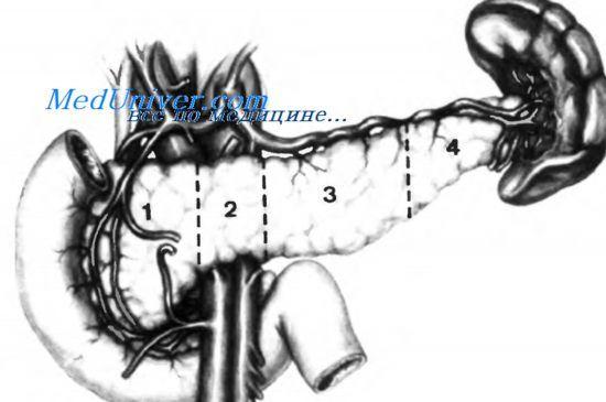 Кортикостероїди (глюкокортикоїди), серотонін.